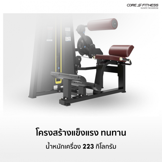 Core-Fitness TB14 (Dual Function) Abdominal Crunch/Lower Back เครื่องบริหารกล้ามท้อง/หลัง มาตรฐานฟิตเนสเซ็นเตอร์